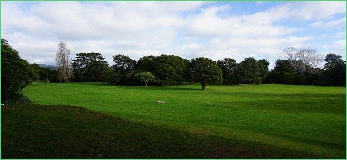 Les jardins publiques de Hartcourt Park